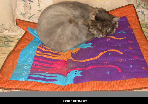 Cats on Quilts